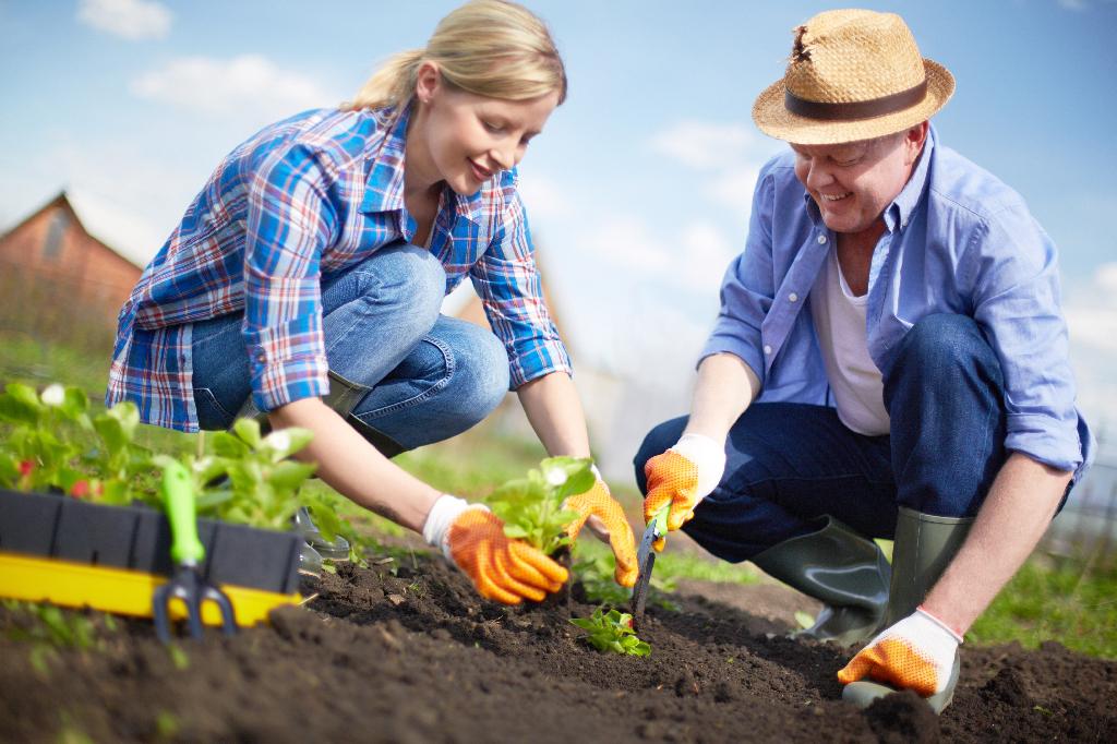 садоводы любители картинки последствия